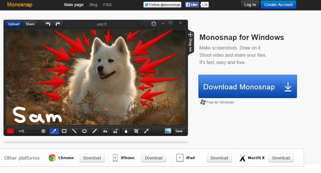 MONOSNAPblogpic1